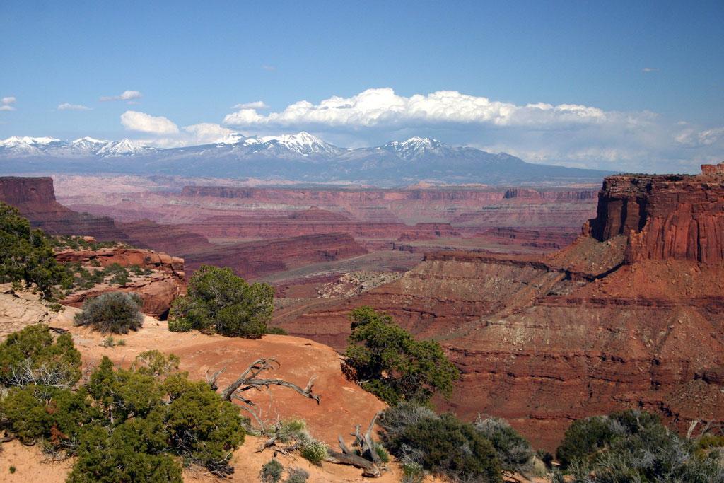 Beautiful Moab 10